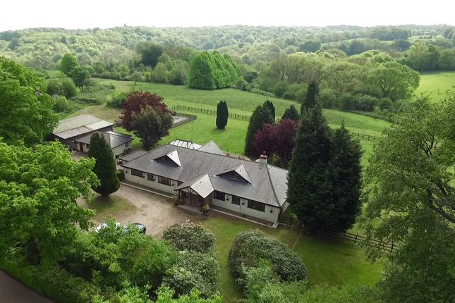 Thumbnail Equestrian property for sale in Buckhurst Road, Westerham