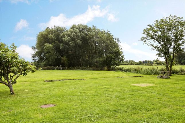 Garden of Hithercroft, Wallingford, Oxfordshire OX10