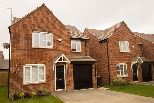 "Thumbnail Detached house for sale in ""The Downing "" at Riber Drive, Chellaston, Derby"