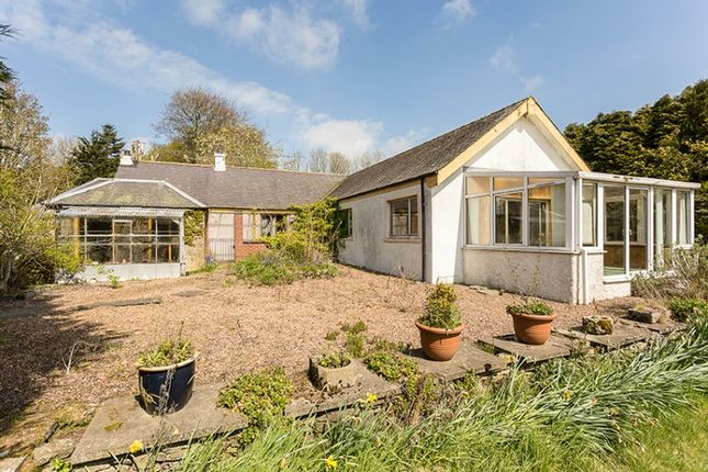 Thumbnail Cottage for sale in Monikie, Broughty Ferry, Angus