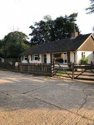 Thumbnail Detached house for sale in Bradley Road, Burrough Green, Newmarket