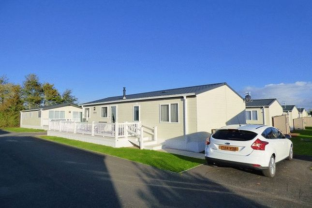 Thumbnail Mobile/park home for sale in Bath Road, Bawdrip, Bridgwater