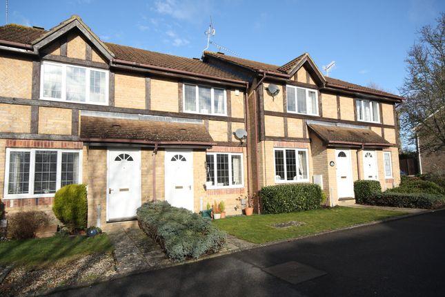 Thumbnail Terraced house to rent in Percheron Drive, Knaphill, Woking