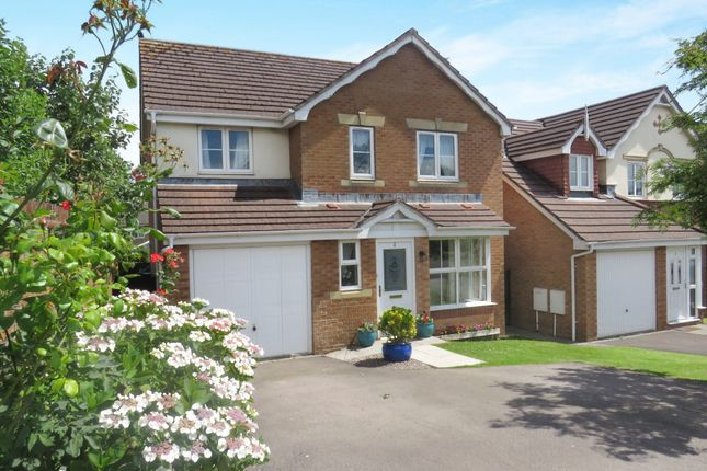 Thumbnail Detached house for sale in Suran Y Gog, Barry