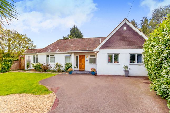 Thumbnail Detached bungalow for sale in Heathway, East Horsley, Leatherhead