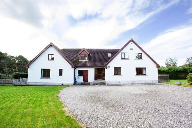 Thumbnail Detached house for sale in Rearquhar, Dornoch, Highland