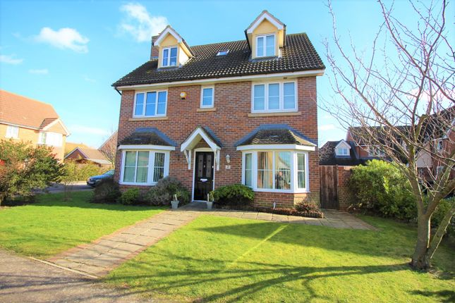 Thumbnail Detached house for sale in Daffodil Close, Hatfield