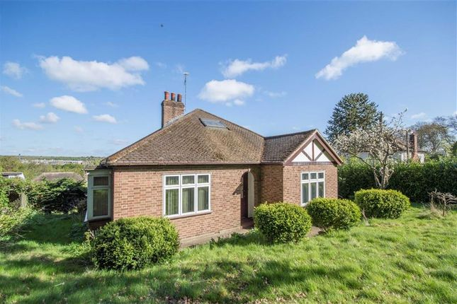 Thumbnail Detached bungalow for sale in Chadwell Rise, Ware, Hertfordshire
