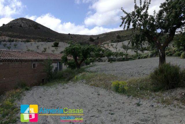 Foto 19 of Albox, Almería, Spain