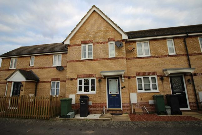 Thumbnail Terraced house to rent in Nichols Grove, Braintree