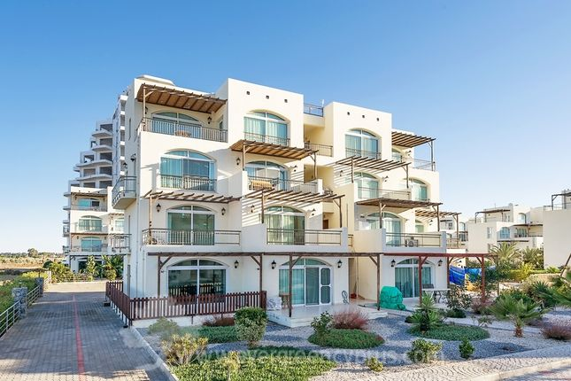 Thumbnail Duplex for sale in Aphrodite Beachfront Village, Gaziveren, Kyrenia, Northern Cyprus