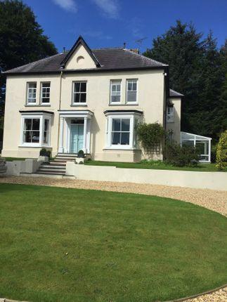 Thumbnail Detached house for sale in Pontshaen, Llandysul