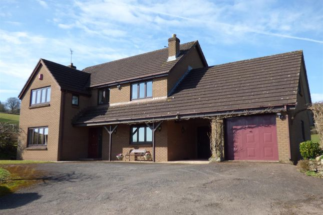 Thumbnail Detached house to rent in Bellmont House, Llangwm, Chepstow