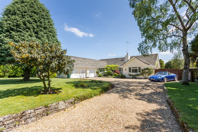 Thumbnail Property for sale in Mockbeggar, New Forest, Hampshire