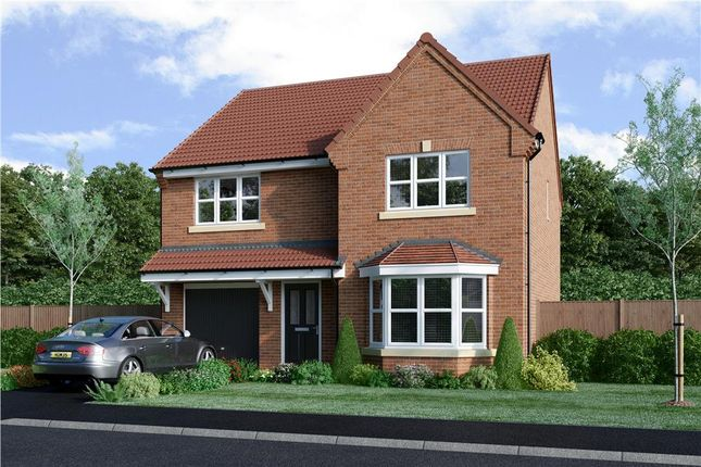 "Thumbnail Detached house for sale in ""Tressell"" at Milby, Boroughbridge, York"