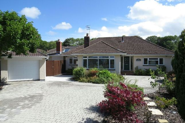 Thumbnail Detached bungalow for sale in Knapps Drive, Winscombe
