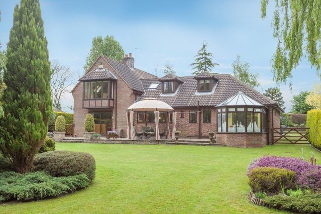 Thumbnail Detached house for sale in Irstead Road, Neatishead, Norwich