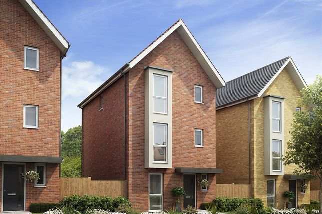 """Thumbnail Detached house for sale in """"The Primrose"""" at Osprey Close, Stanway, Colchester"""