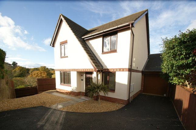 Thumbnail Detached house for sale in Brecon Close, Paignton