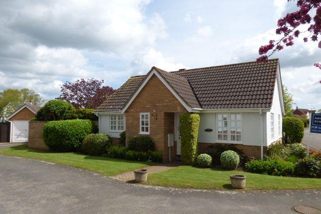 Thumbnail Detached bungalow for sale in Maple Way, Leavenheath, Colchester