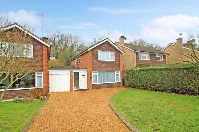 Thumbnail Detached house for sale in Send Marsh, Ripley, Woking