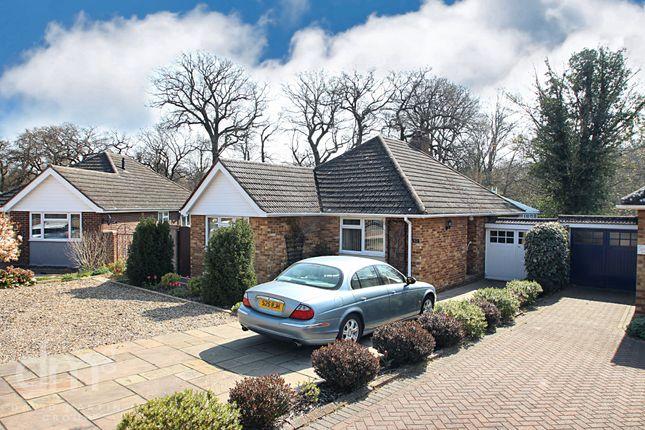 Thumbnail Detached bungalow for sale in Thompson Avenue, Colchester