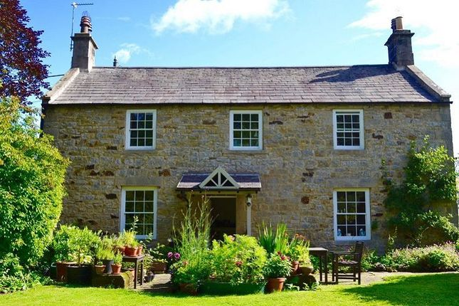 Thumbnail Detached house to rent in Newbrough, Hexham