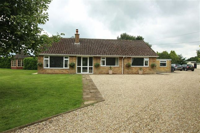 Thumbnail Bungalow for sale in North Willingham, Market Rasen