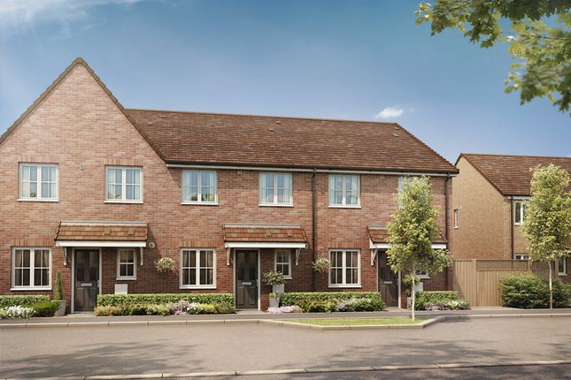 """Thumbnail End terrace house for sale in """"The Aster"""" at Bellona Drive, Peterborough"""