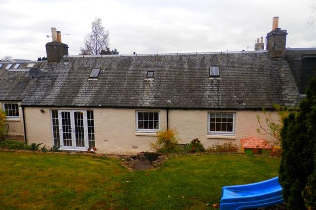 Thumbnail Semi-detached house to rent in Feus, Auchterarder