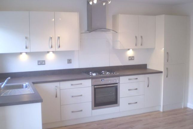 Thumbnail Flat to rent in Torrington Lane, Bideford, Devon