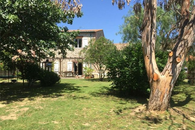 Montescot, Languedoc-Roussillon, 66200, France