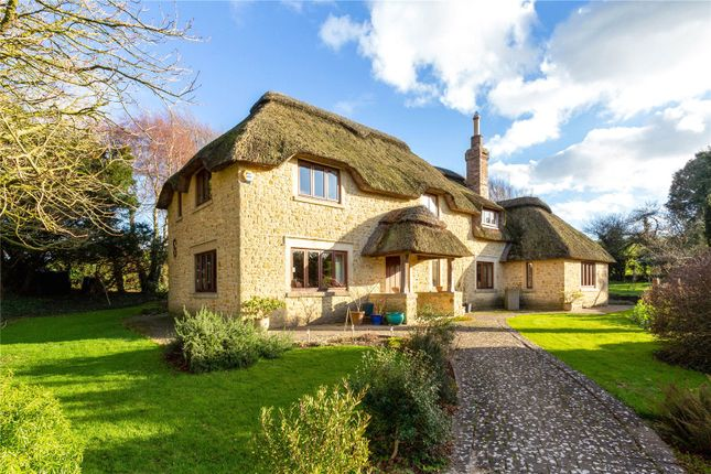 Thumbnail Detached house for sale in Chydyok Road, Chaldon Herring, Dorchester, Dorset