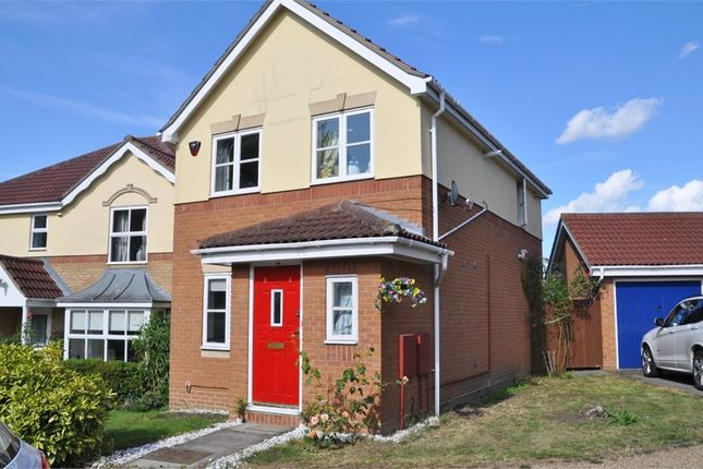 Thumbnail Detached house for sale in Fortinbras Way, Chelmsford, Essex