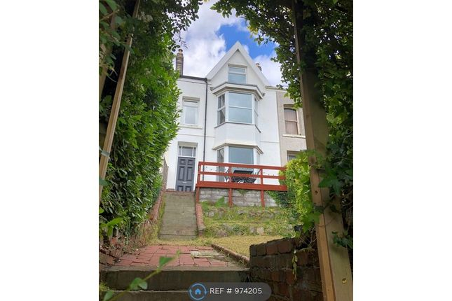 Thumbnail Terraced house to rent in Chaddesley Terrace, Swansea