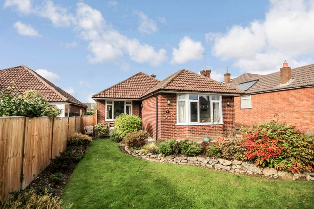 Thumbnail Bungalow for sale in Treadcroft Drive, Horsham, West Sussex