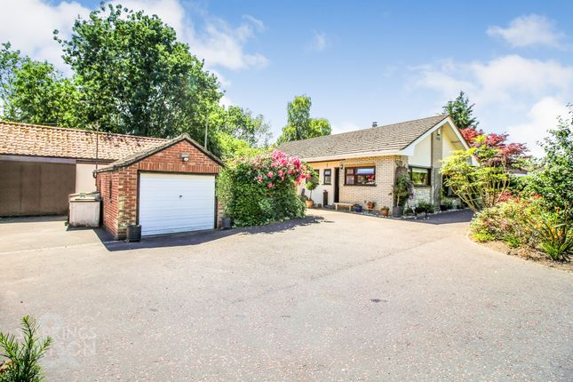 Thumbnail Detached bungalow for sale in High Road, Bressingham, Diss
