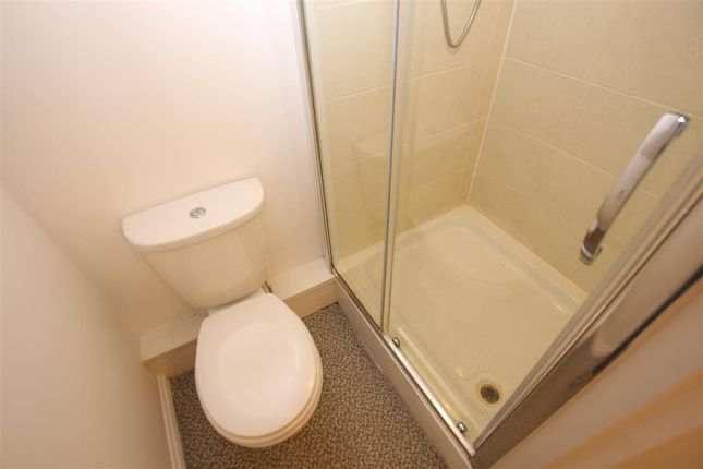 Shower Room To Bed 3