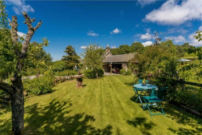 Thumbnail Cottage for sale in Strath Tummel, Pitlochry