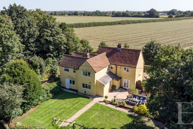 Thumbnail Detached house for sale in East Gores Road, Coggeshall, Colchester