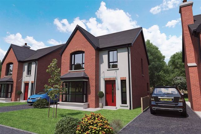 Thumbnail Detached house for sale in 13, Royal Ascot Mews, Carryduff
