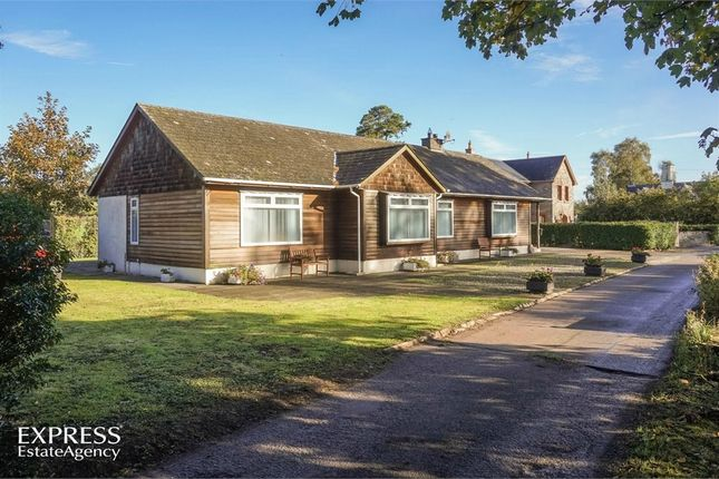 Thumbnail Detached bungalow for sale in Bay Road, Crumlin, County Antrim