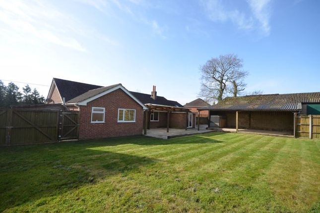 Thumbnail Detached bungalow to rent in Durley Brook Road, Durley, Southampton