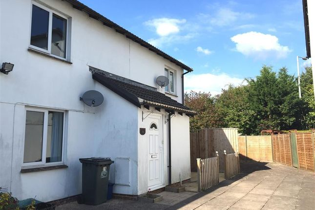 Thumbnail Property to rent in Ashmill Court, Newton Abbot