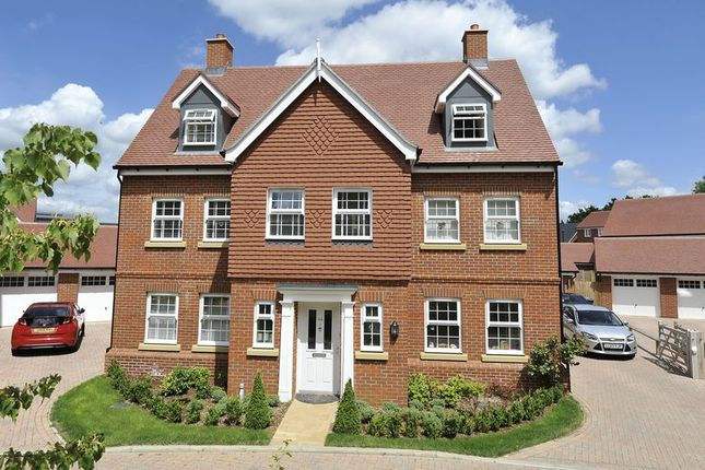 Thumbnail Detached house to rent in Grayling Close, Godalming