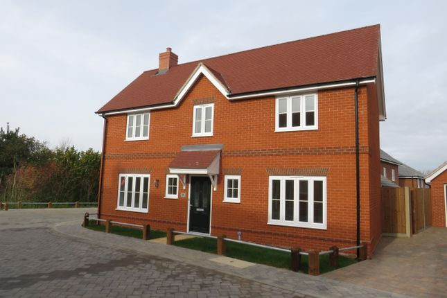 Thumbnail Detached house to rent in Casey Jones Close, Bury St. Edmunds