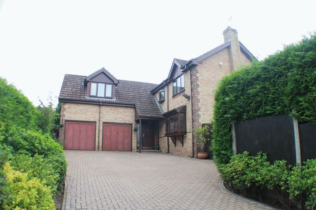Thumbnail Detached house for sale in Upper Northam Close, Hedge End, Southampton