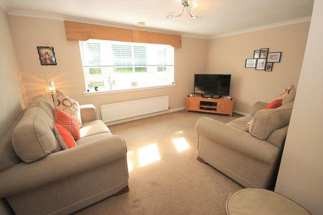 Lounge of Fife Drive, Motherwell ML1