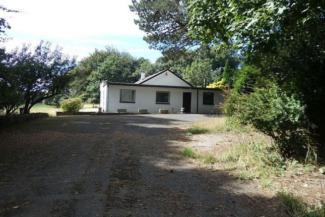 Thumbnail Detached bungalow for sale in Escowbeck Knoll, Caton