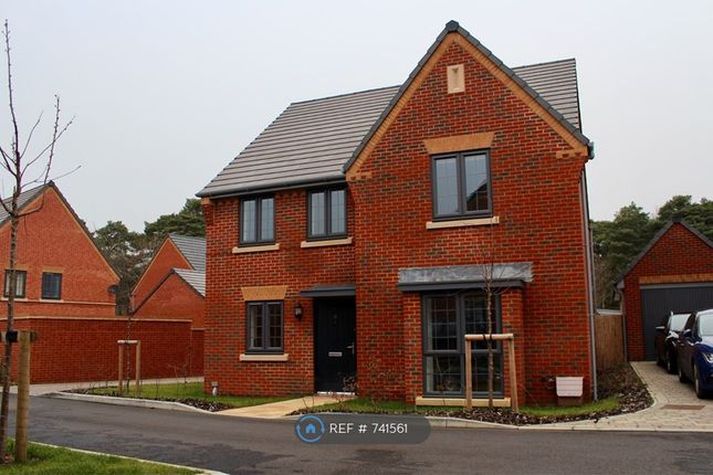 Thumbnail Detached house to rent in Oxney Way, Bordon